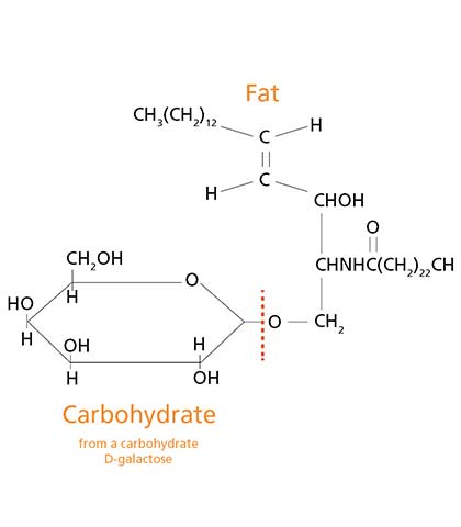 Hydrotec Carbohydrate